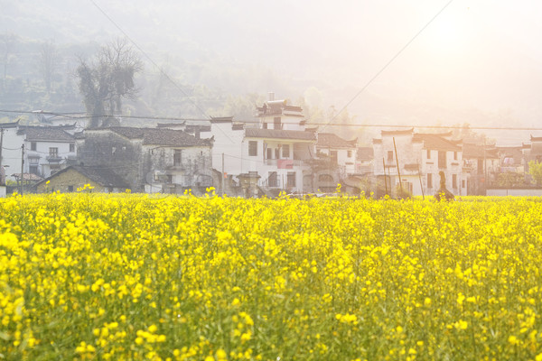 China country side Stock photo © cozyta