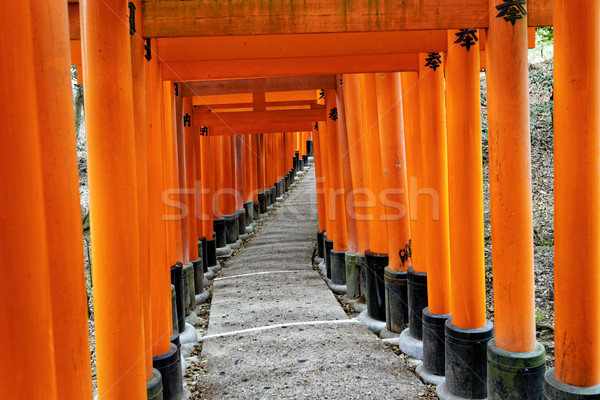 Santuario kyoto Giappone arancione rosso japanese Foto d'archivio © cozyta