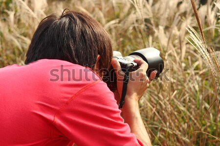 photographer taking photo in country side  Stock photo © cozyta