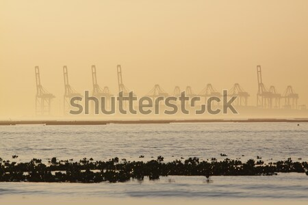 Contenant brumeux matin industrie architecture brouillard Photo stock © cozyta