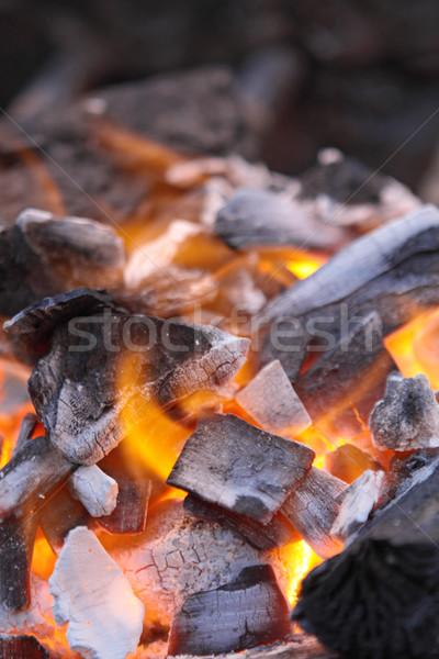 Piros fa tűz narancs éjszaka fekete Stock fotó © cozyta