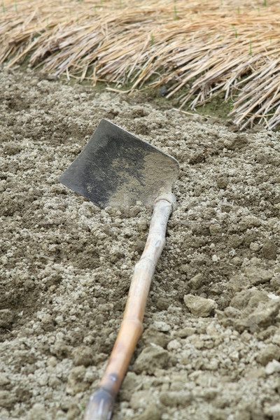 spade ready to prepare vegetable bed for sowing  Stock photo © cozyta