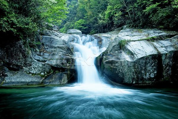 Large rain forest waterfall Stock photo © cozyta