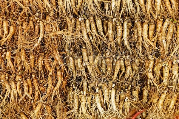 Ginzeng tömeg igazi észak étel egészség Stock fotó © cozyta