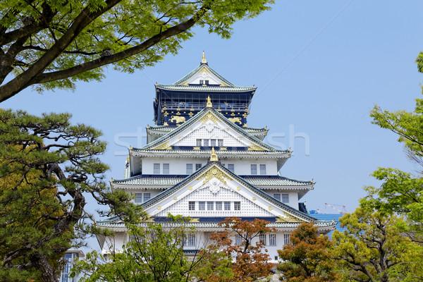 Osaka kale ağaç manzara dizayn yaz Stok fotoğraf © cozyta