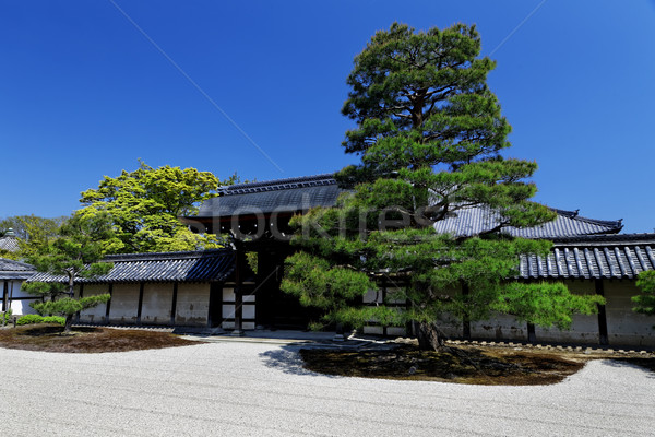 Japanese garden Stock photo © cozyta
