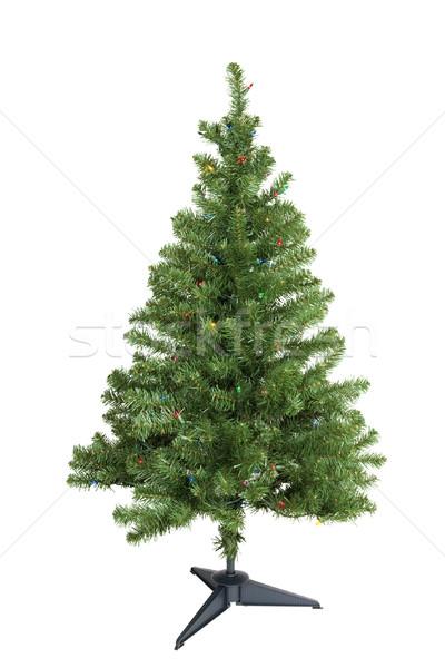 Karácsonyfa izolált zöld fények fehér karácsony Stock fotó © CrackerClips