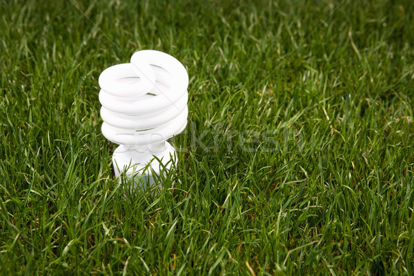 Energy Saving Light Bulb Stock photo © CrackerClips