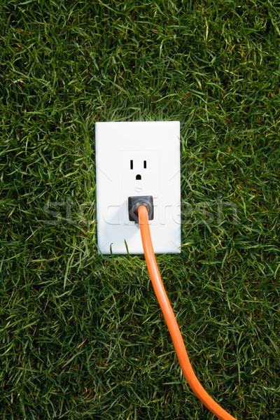 Electrical outlet in grass Stock photo © CrackerClips