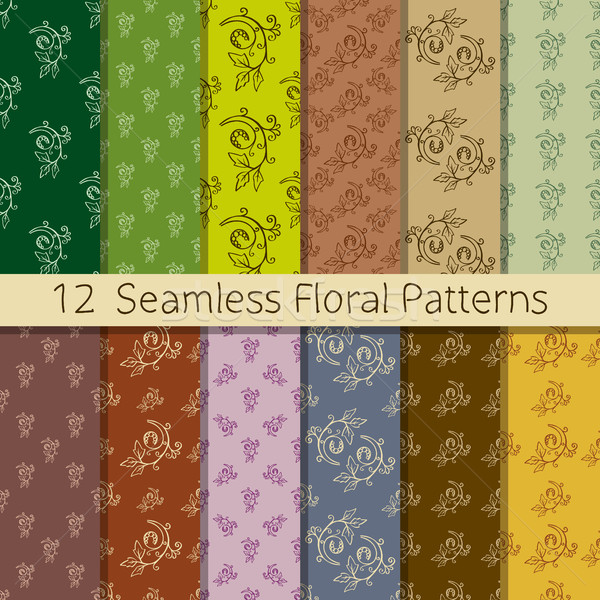Floral conjunto 12 Foto stock © creativika
