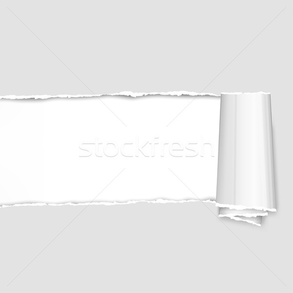 Torn paper pieces on grey Stock photo © creatOR76