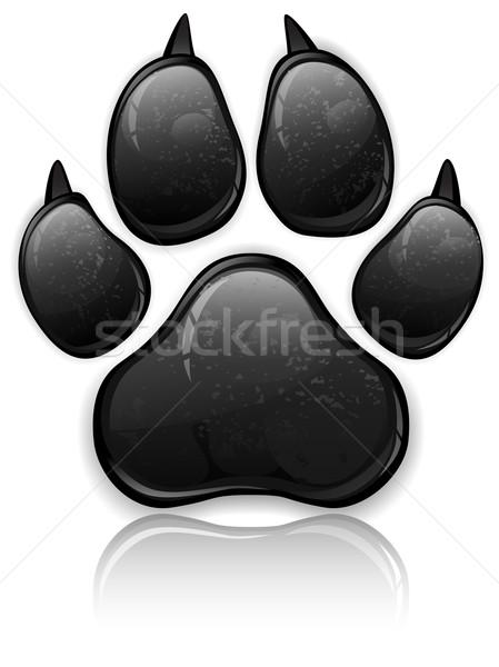 Photo stock: Patte · noir · animaux · imprimer · isolé · blanche
