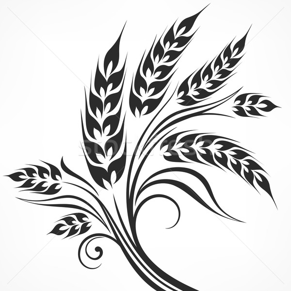 Stylized ears of wheat in black Stock photo © creatOR76