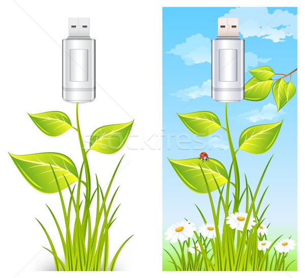 Flash drive plant usb planten bloemen milieu Stockfoto © creatOR76