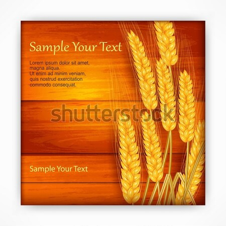 Ears of wheat on wooden Stock photo © creatOR76