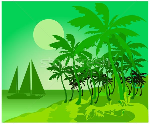 Palm зеленый пляж подробный тропические отпуск Сток-фото © creatOR76