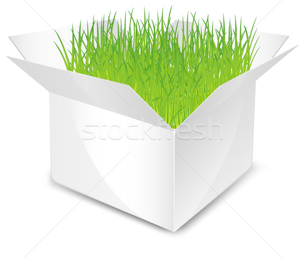 box with grass Stock photo © creatOR76