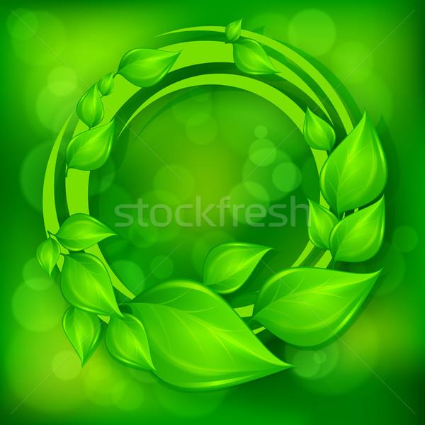 зеленые листья венок зеленый природы дизайна Живопись Сток-фото © creatOR76