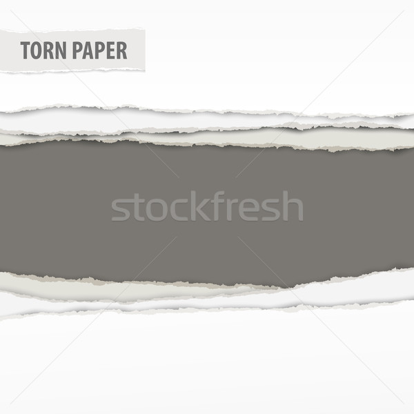 рваной бумаги частей серый пространстве текста текстуры Сток-фото © creatOR76