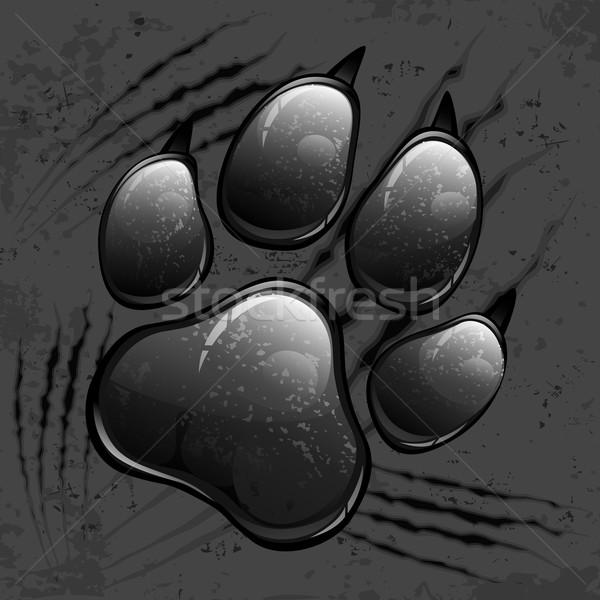 Sötét mancs nyomtatott állat kutya macska Stock fotó © creatOR76