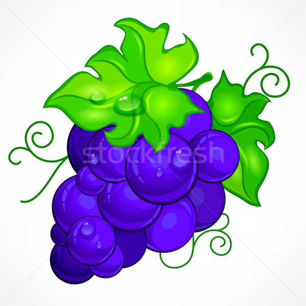 Cluster blue grapes on white Stock photo © creatOR76
