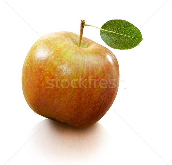 Elma taze kırmızı yeşil beyaz gıda Stok fotoğraf © crisp
