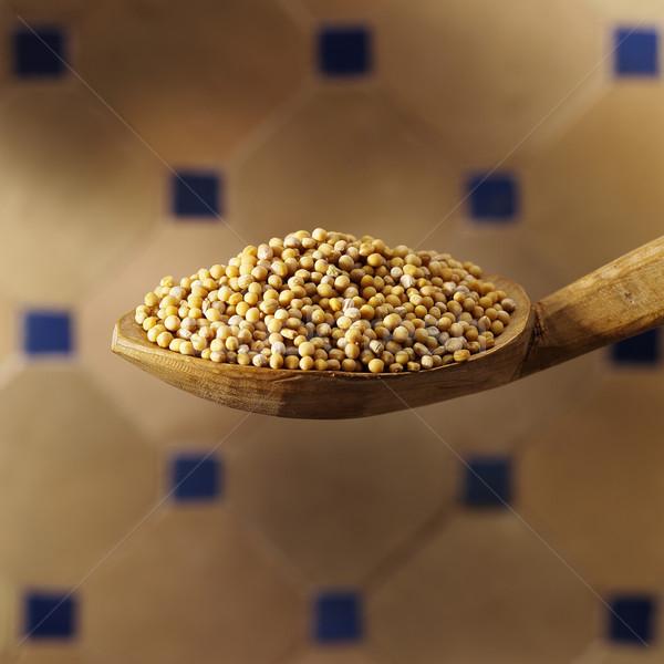 Musztarda łyżka nasion żywności vintage hot Zdjęcia stock © crisp
