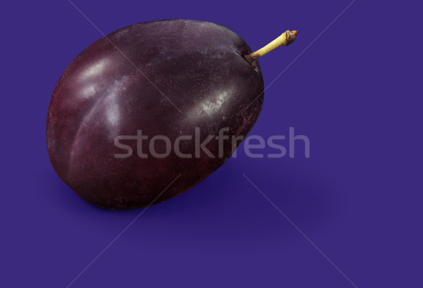 Prune or plum Stock photo © crisp