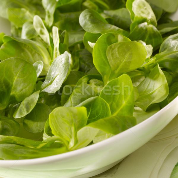 зеленый Nice Сток-фото © crisp
