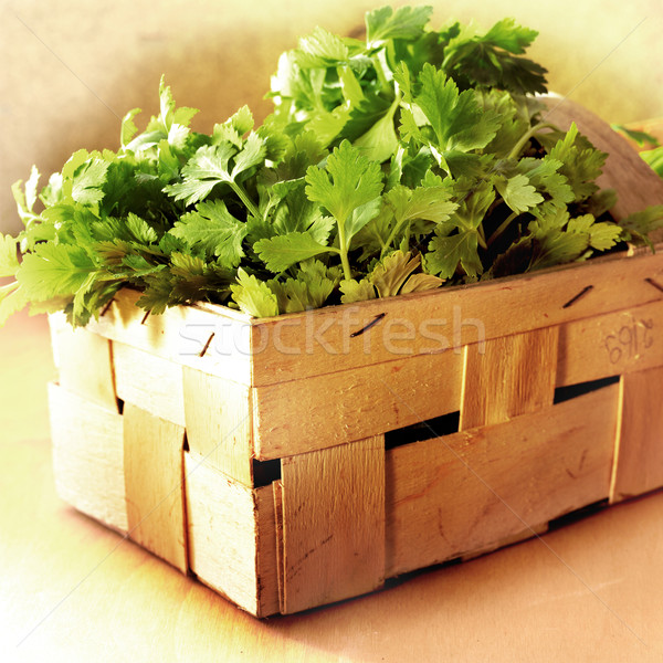 parsley in a crate Stock photo © crisp