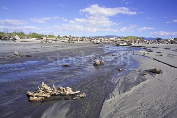 Dere geniş görmek su bahar manzara Stok fotoğraf © crisp