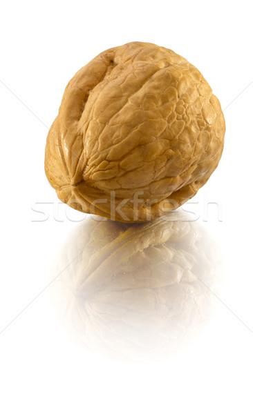 Walnut Stock photo © crisp