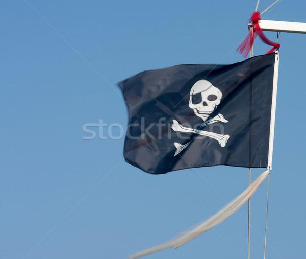 pirate flag  Stock photo © csakisti