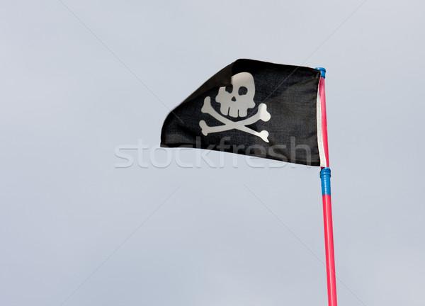 black pirate flag Stock photo © csakisti
