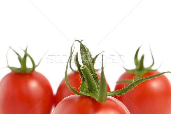 Tomatoes on White Background Stock photo © CsDeli