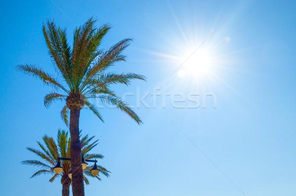 Malvarrosa beach, Valencia, Spain Stock photo © CsDeli