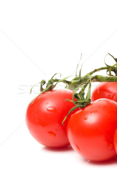 Fresco tomates vermelho branco água fundo Foto stock © ctacik