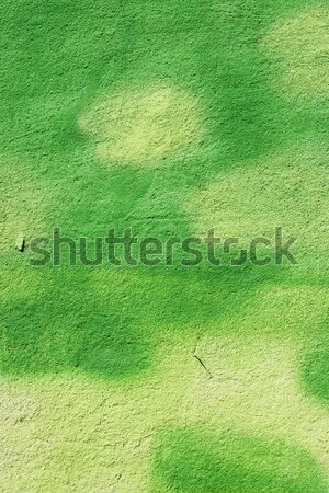 green painted wall Stock photo © ctacik