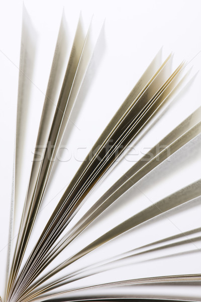 book pages Stock photo © ctacik