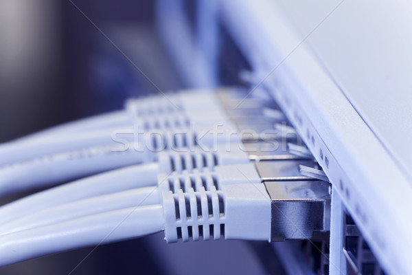 lan cables connected to a switch Stock photo © ctacik