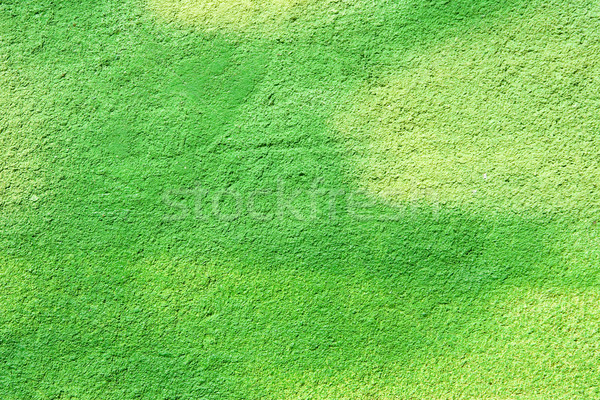 green wall background Stock photo © ctacik