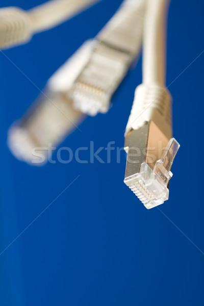 ネットワーク ケーブル 白 青 コンピュータ インターネット ストックフォト © ctacik