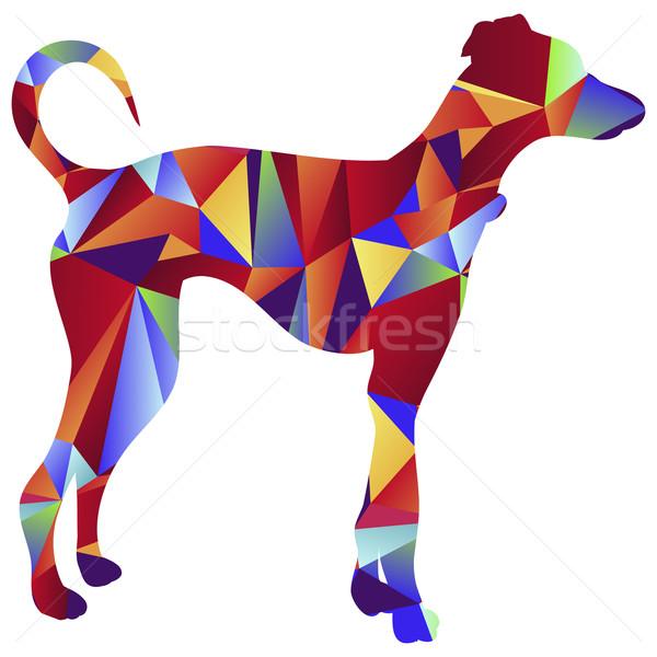 çokgen tazı köpek ikon görüntü stil Stok fotoğraf © cteconsulting