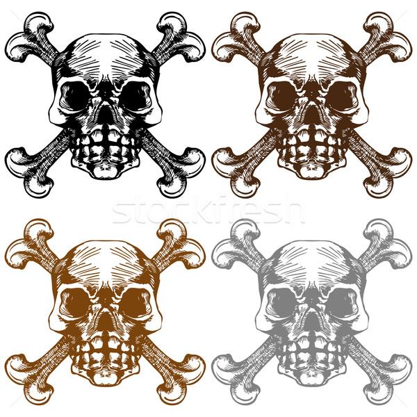 Stok fotoğraf: Kafatası · çapraz · kemikleri · ayarlamak · kafatasları · sanat