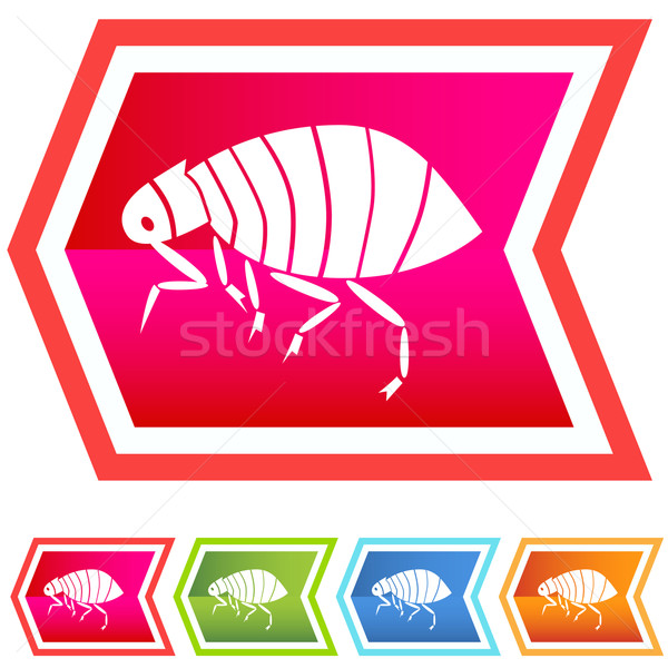 Immagine cane animale scratch bug icona Foto d'archivio © cteconsulting