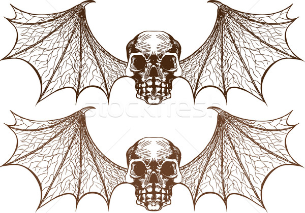 Winged Skeletons Stock photo © cteconsulting