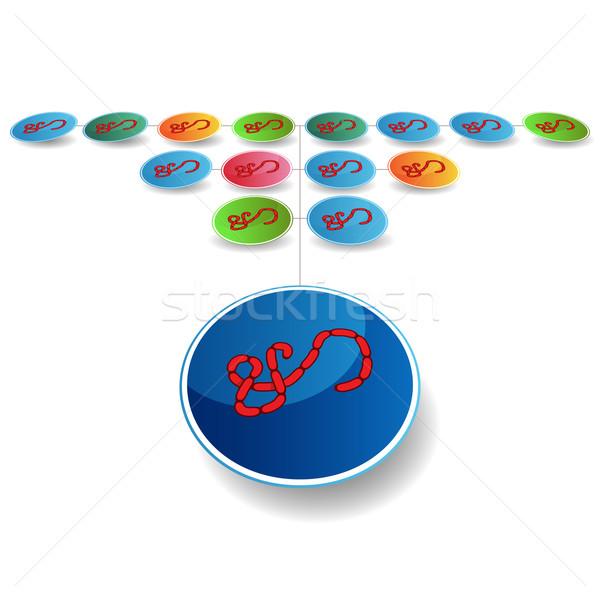 Virus Expansion Chart Stock photo © cteconsulting
