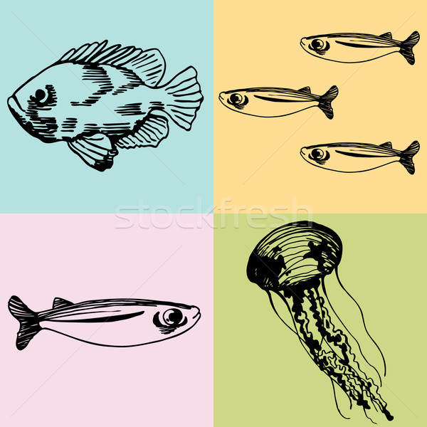 Set of Marine Life Stock photo © cteconsulting