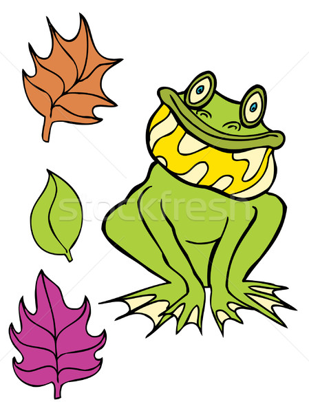 Frog Stock photo © cteconsulting