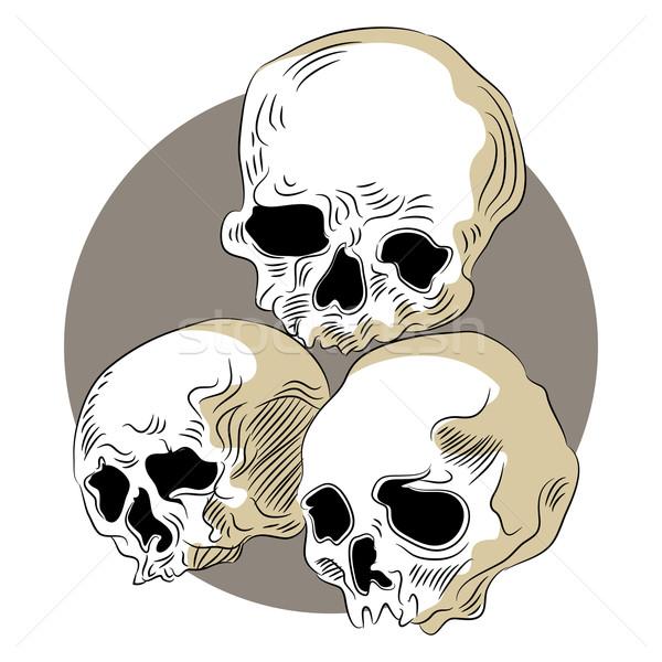 Human Skulls Icon Stock photo © cteconsulting